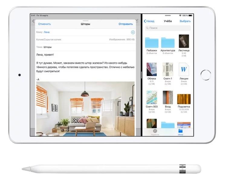 iPad mini 5 Wi-Fi + Cellular 256GB Space Gray (MUXM2) 3